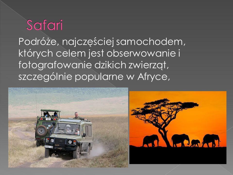 Safari Podróże, najczęściej samochodem, których celem jest obserwowanie i fotografowanie dzikich zwierząt, szczególnie popularne w Afryce,