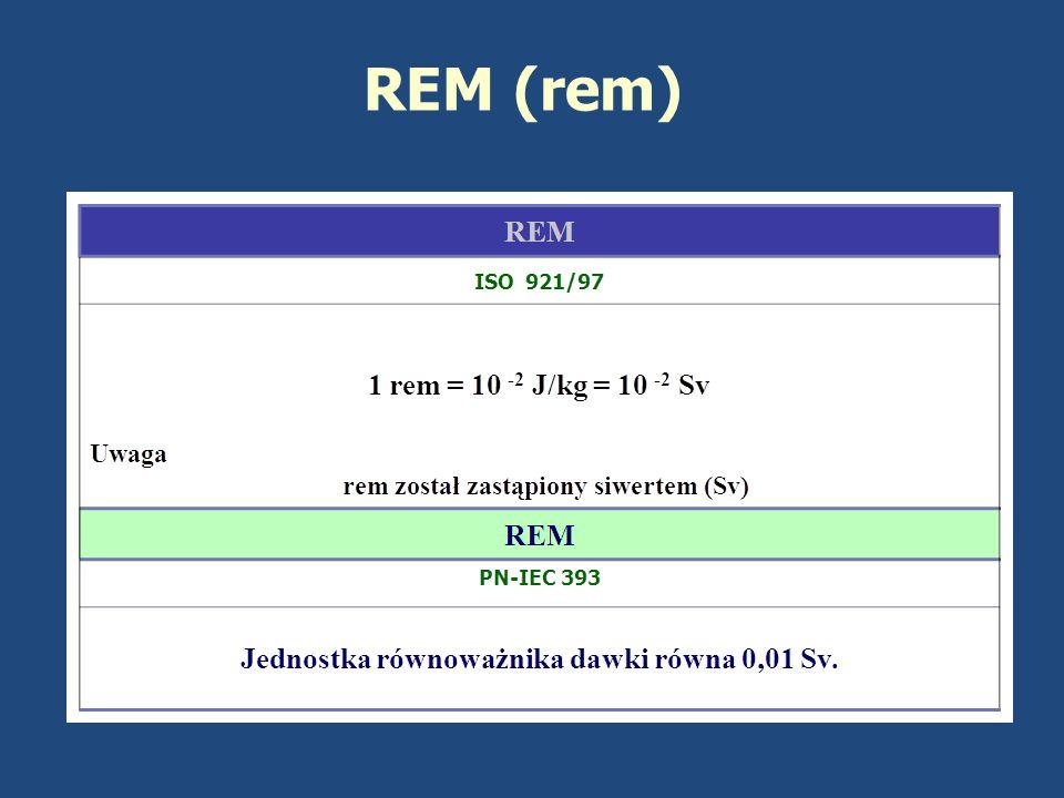REM (rem)