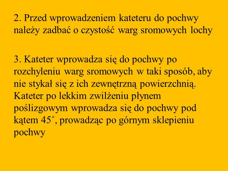 2. Przed wprowadzeniem kateteru do pochwy należy zadbać o czystość warg sromowych lochy 3.