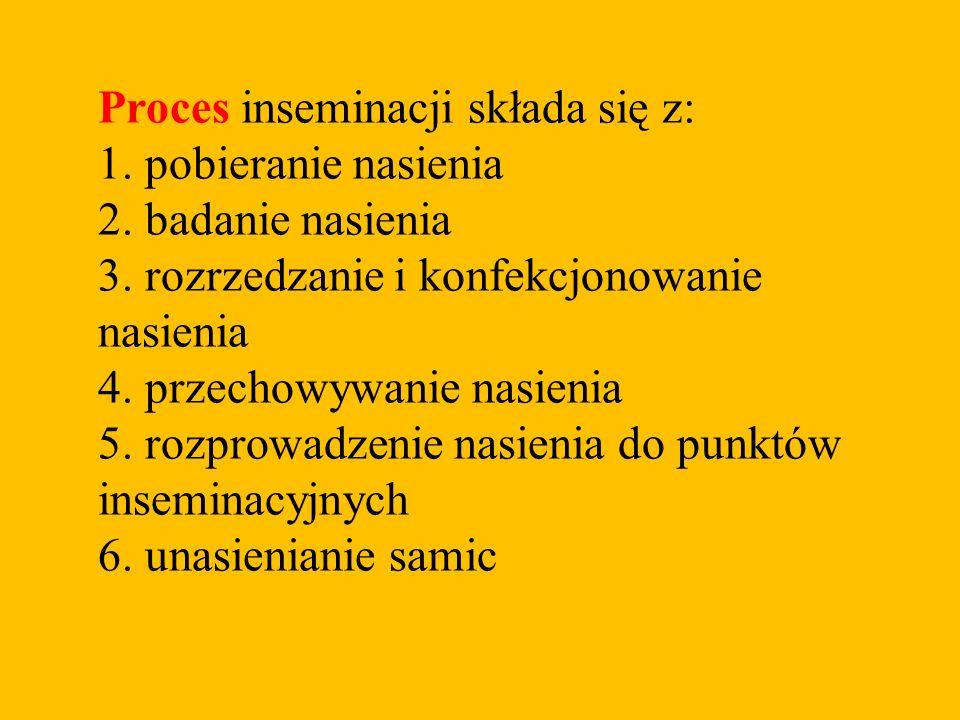 Proces inseminacji składa się z: 1. pobieranie nasienia 2