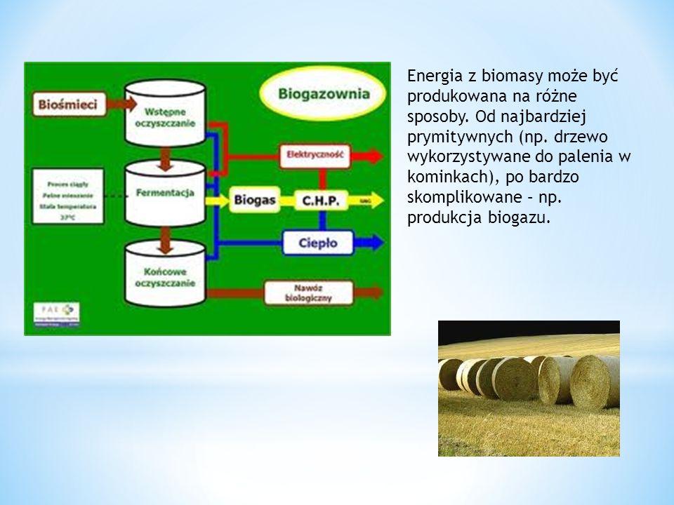Energia z biomasy może być produkowana na różne sposoby