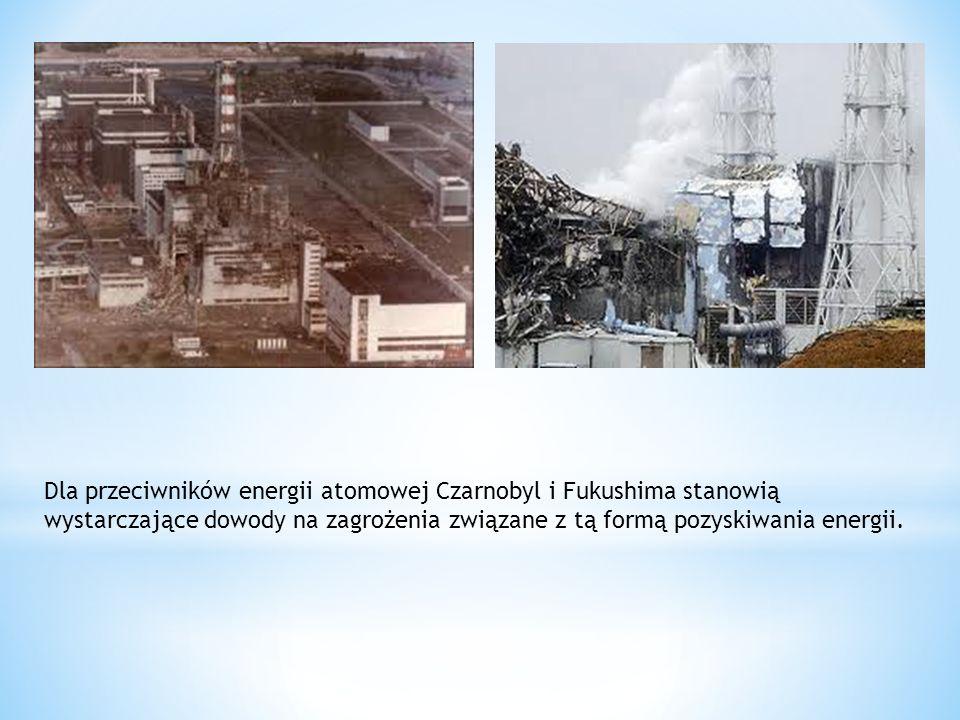 Dla przeciwników energii atomowej Czarnobyl i Fukushima stanowią wystarczające dowody na zagrożenia związane z tą formą pozyskiwania energii.