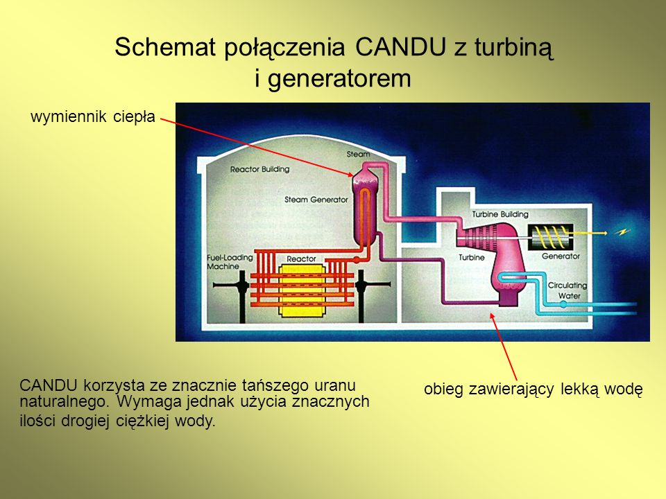 Schemat połączenia CANDU z turbiną i generatorem