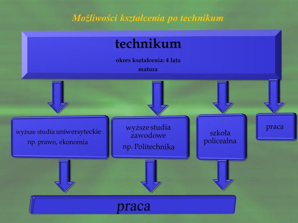 Możliwości kształcenia po technikum