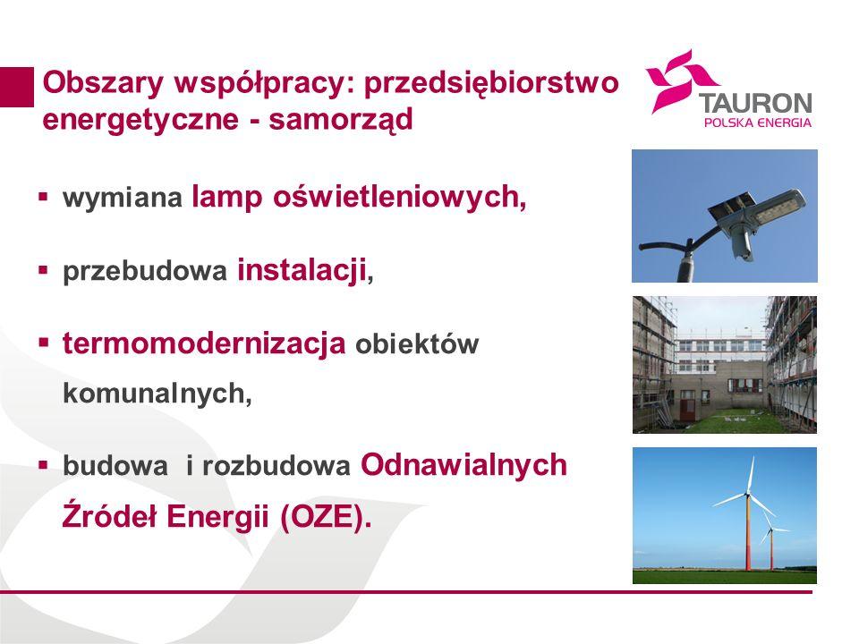 Obszary współpracy: przedsiębiorstwo energetyczne - samorząd