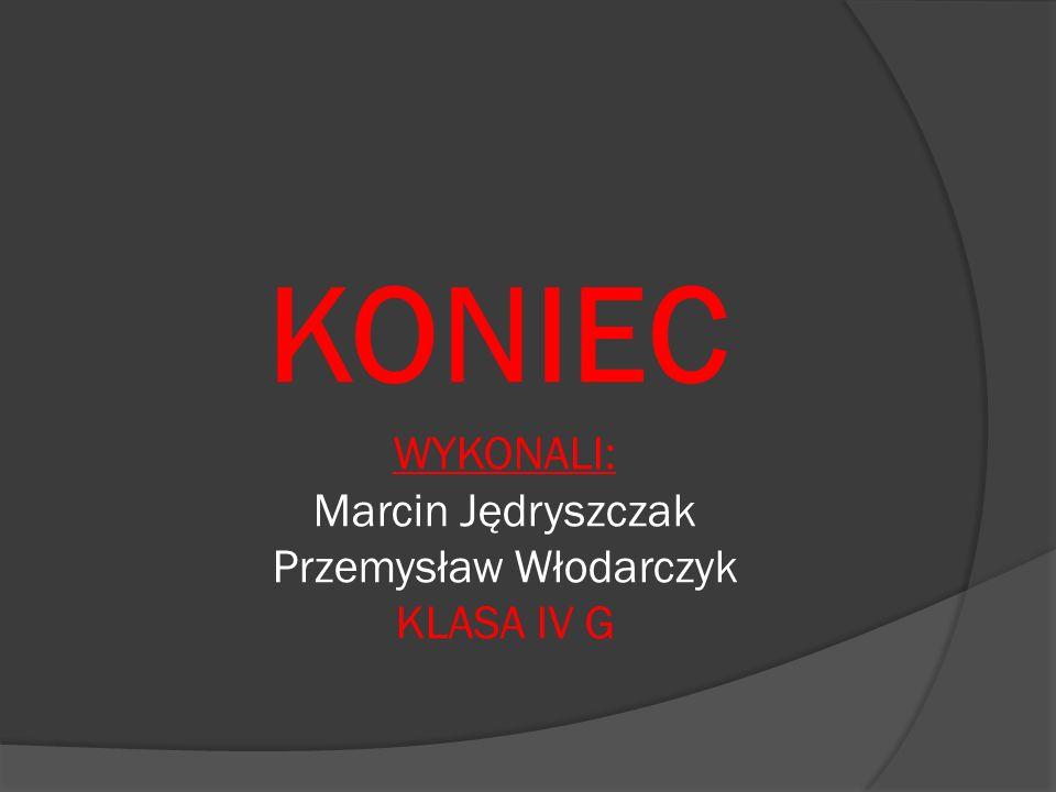 Przemysław Włodarczyk