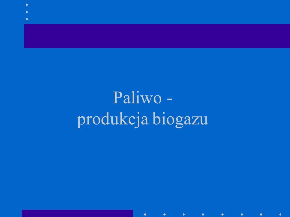 Paliwo - produkcja biogazu