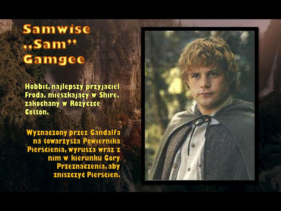 """Samwise """"Sam Gamgee Hobbit, najlepszy przyjaciel Froda, mieszkający w Shire, zakochany w Różyczce Cotton."""