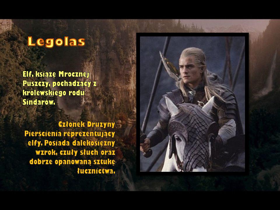 Legolas Elf, książę Mrocznej Puszczy, pochadzący z królewskiego rodu Sindarów.