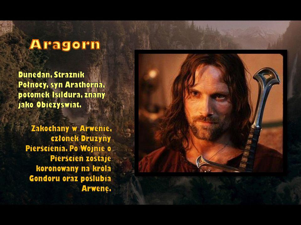 Aragorn Dunedan, Strażnik Północy, syn Arathorna, potomek Isildura, znany jako Obieżyświat.