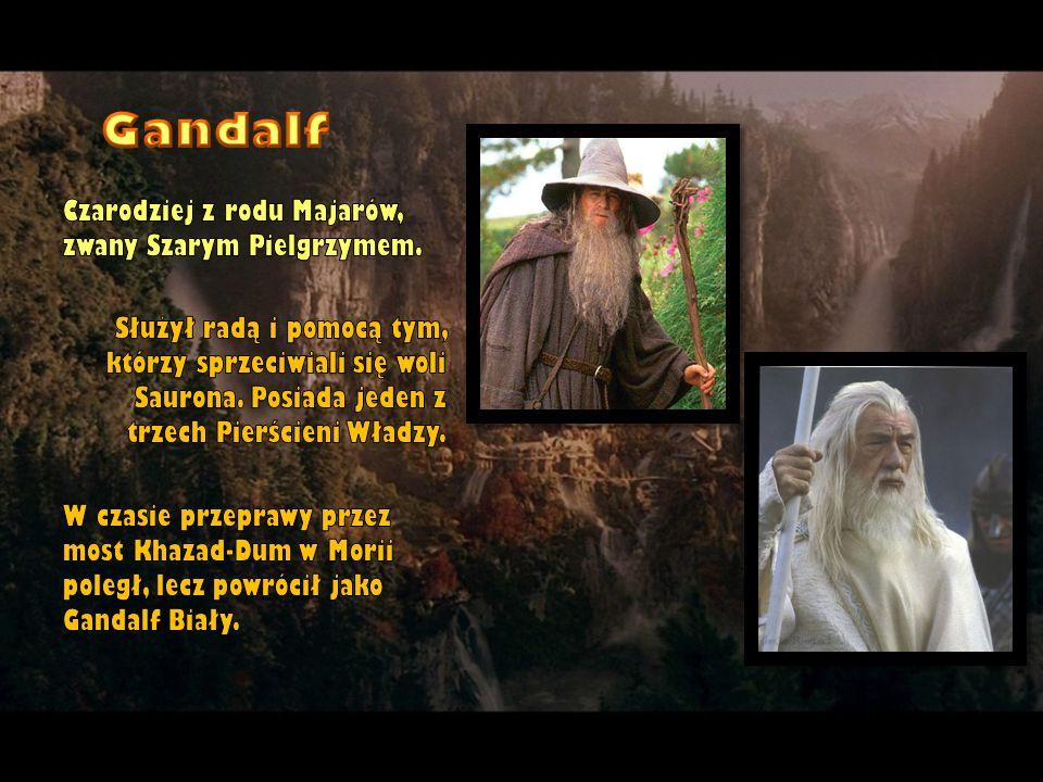 Gandalf Czarodziej z rodu Majarów, zwany Szarym Pielgrzymem.