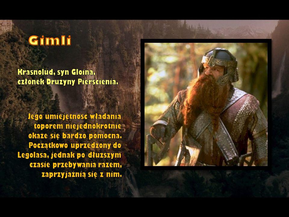 Gimli Krasnolud, syn Gloina, członek Drużyny Pierścienia.
