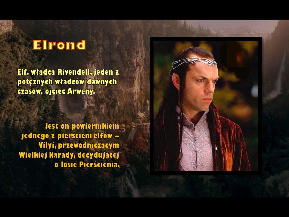Elrond Elf, władca Rivendell, jeden z potężnych władców dawnych czasów, ojciec Arweny.