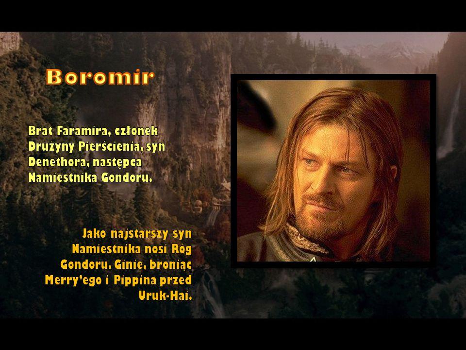 Boromir Brat Faramira, członek Drużyny Pierścienia, syn Denethora, następca Namiestnika Gondoru.