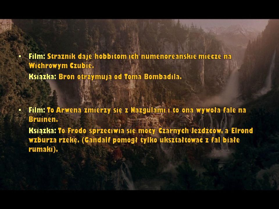 Film: Strażnik daje hobbitom ich numenoreańskie miecze na Wichrowym Czubie.