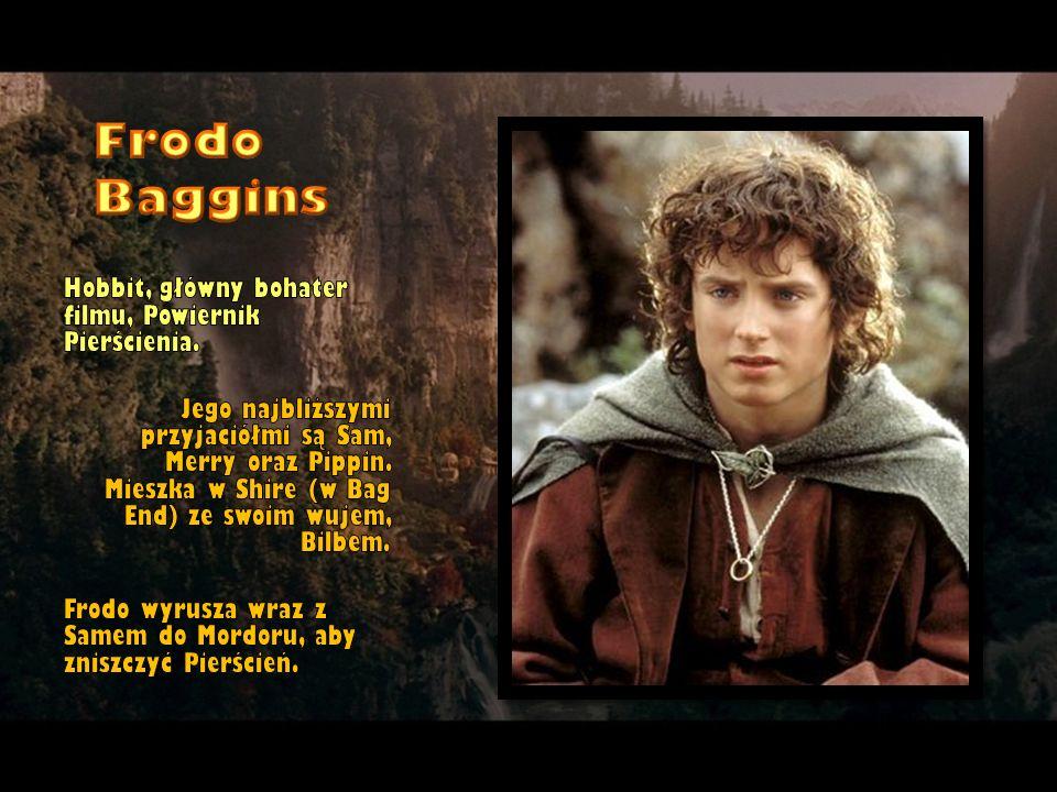 Frodo Baggins Hobbit, główny bohater filmu, Powiernik Pierścienia.