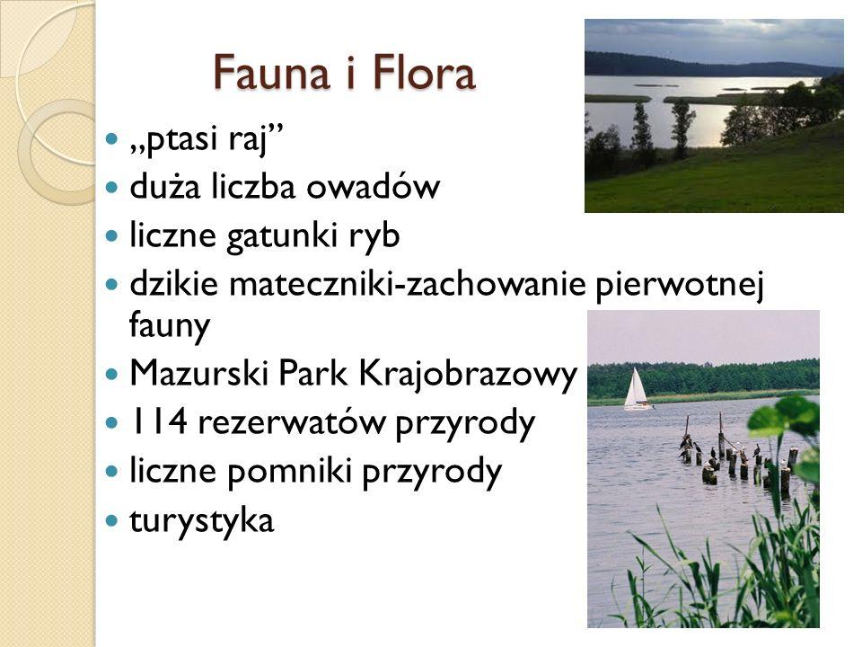 """Fauna i Flora """"ptasi raj duża liczba owadów liczne gatunki ryb"""