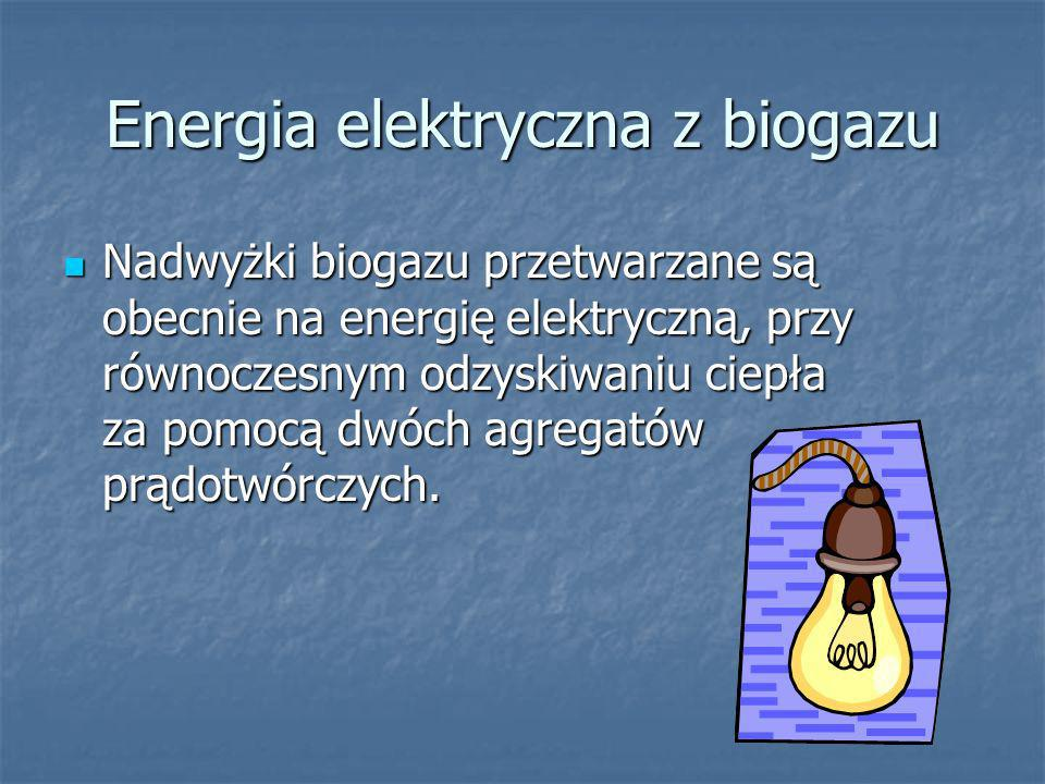 Energia elektryczna z biogazu
