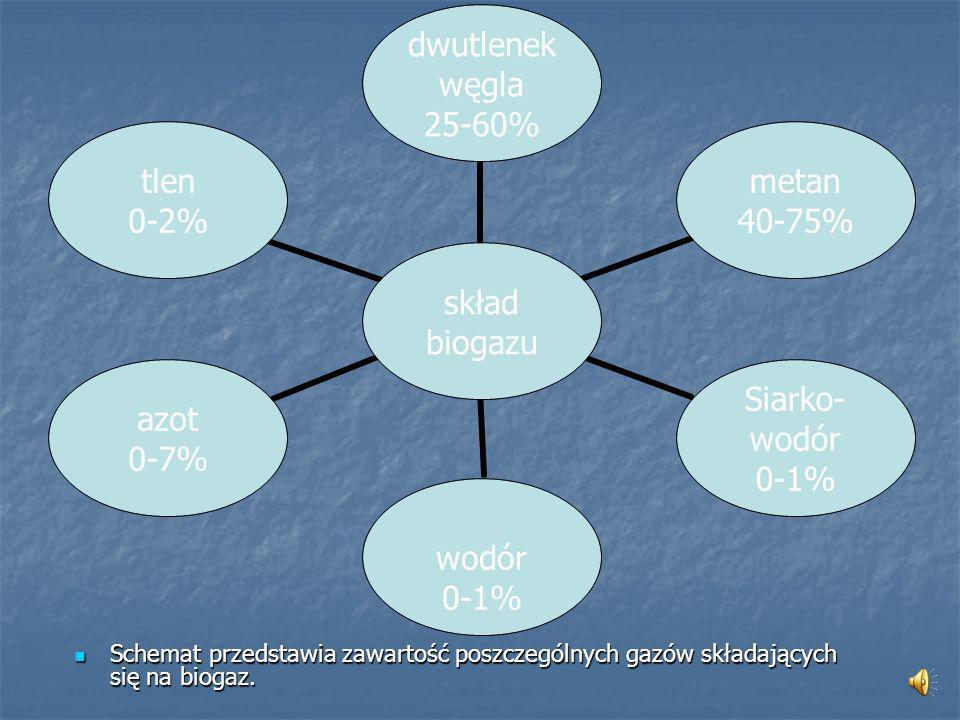 Schemat przedstawia zawartość poszczególnych gazów składających się na biogaz.