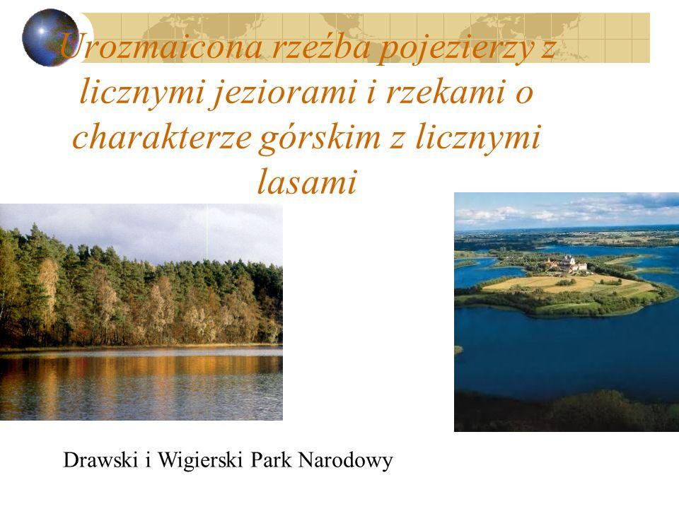 Urozmaicona rzeźba pojezierzy z licznymi jeziorami i rzekami o charakterze górskim z licznymi lasami