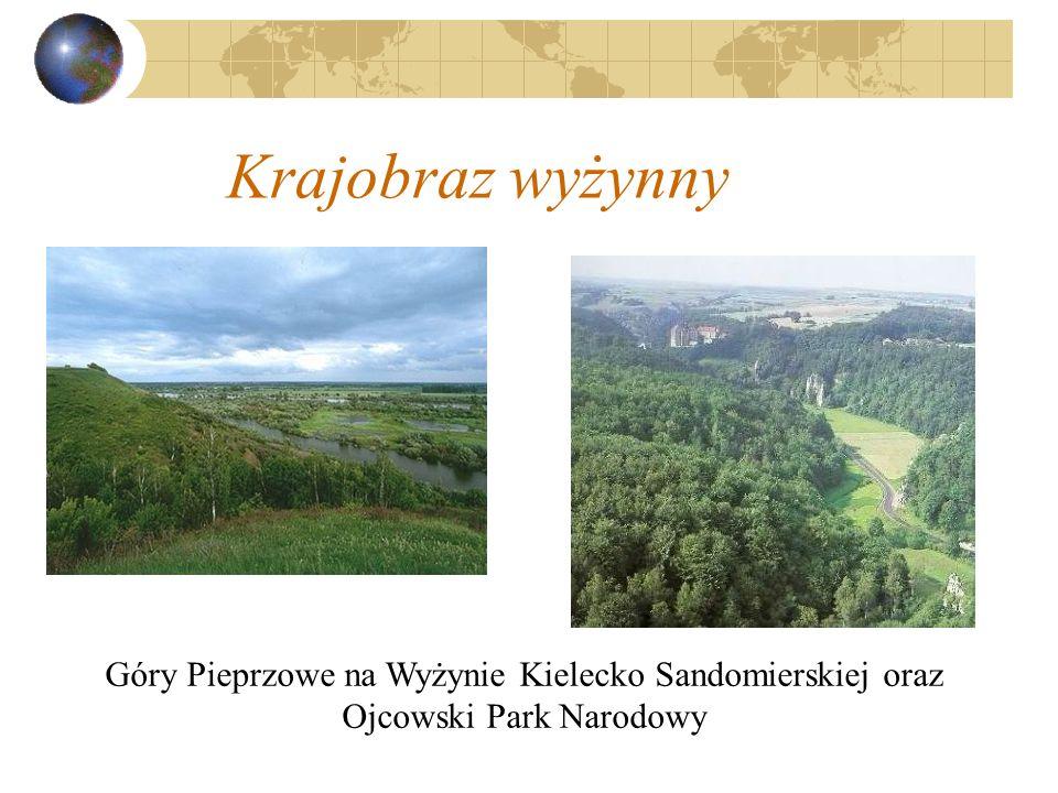 Krajobraz wyżynny Góry Pieprzowe na Wyżynie Kielecko Sandomierskiej oraz Ojcowski Park Narodowy