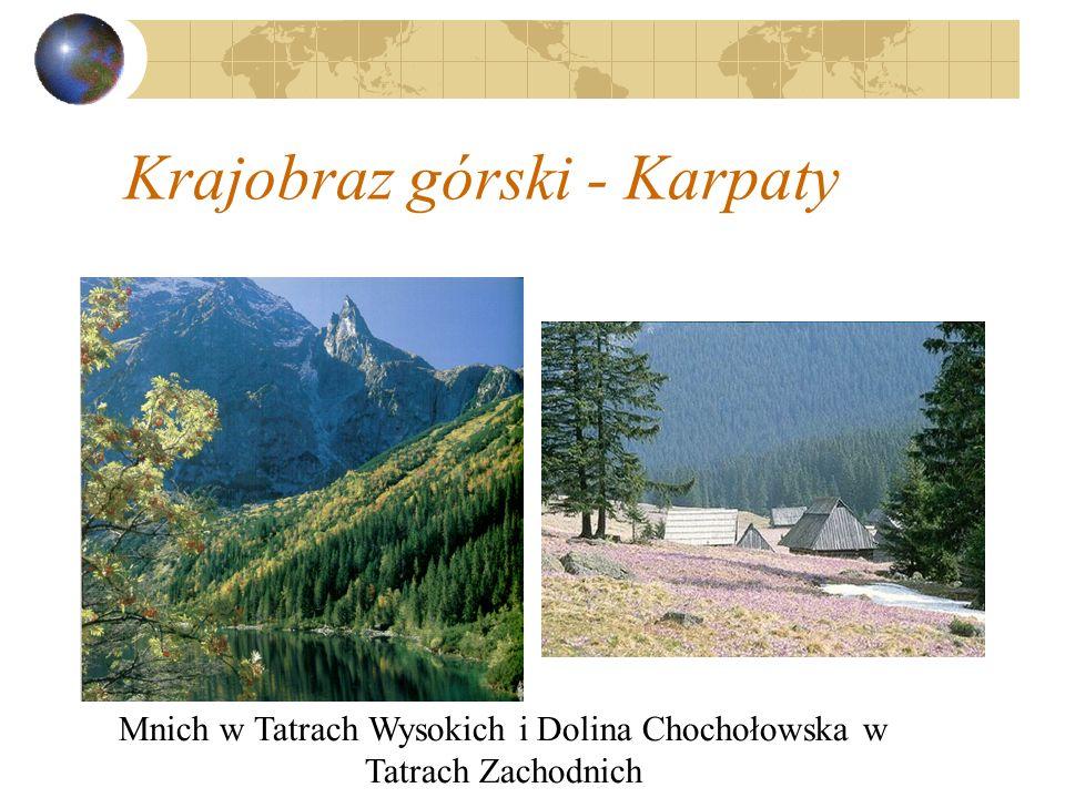 Krajobraz górski - Karpaty