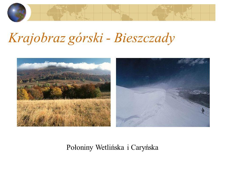 Krajobraz górski - Bieszczady