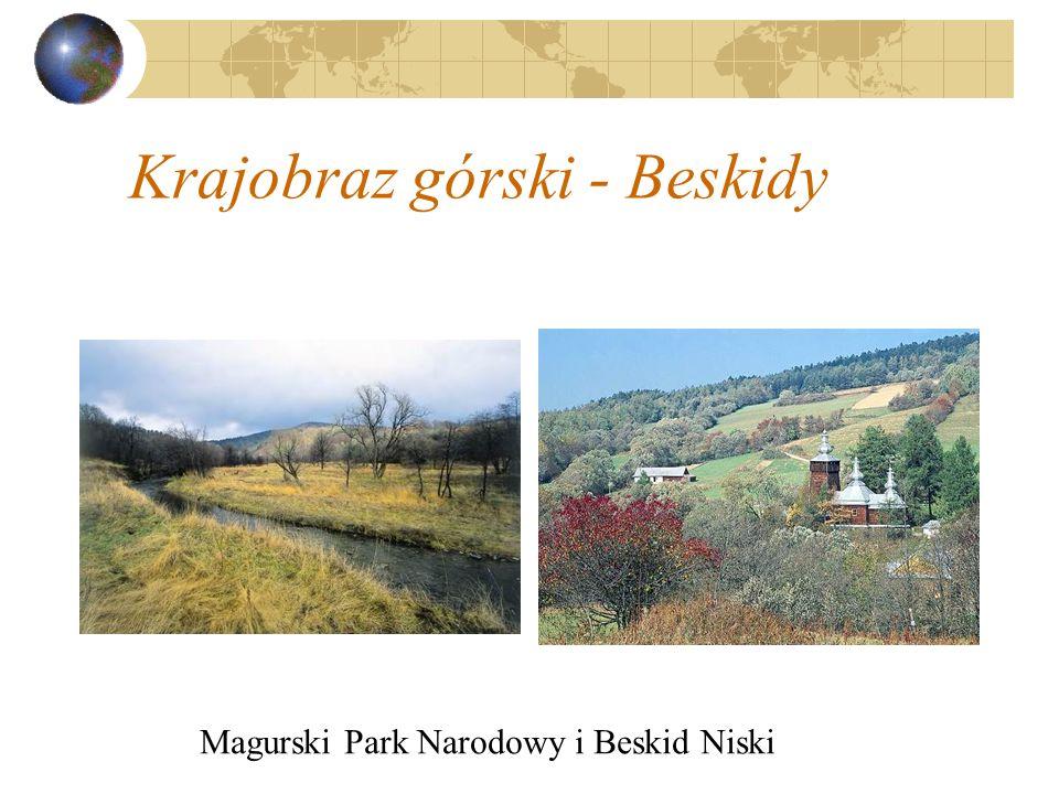 Krajobraz górski - Beskidy