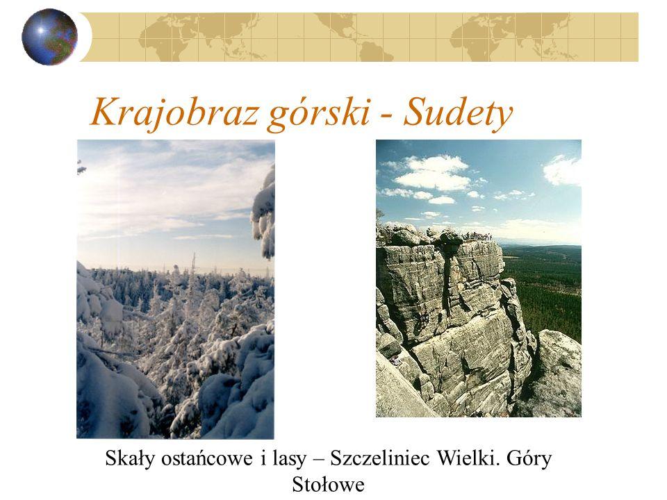 Krajobraz górski - Sudety