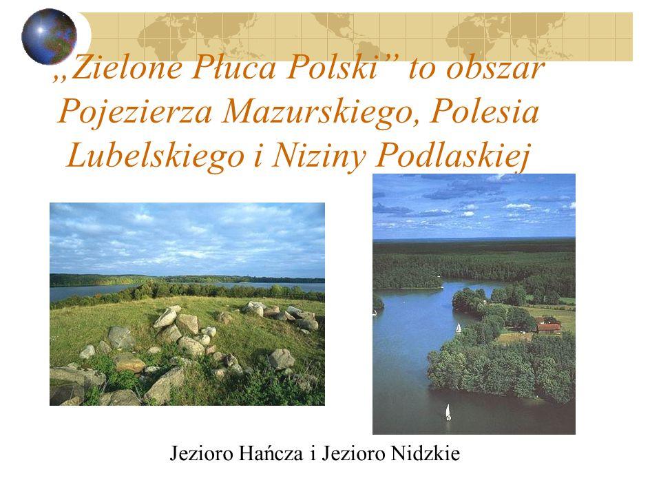 Jezioro Hańcza i Jezioro Nidzkie
