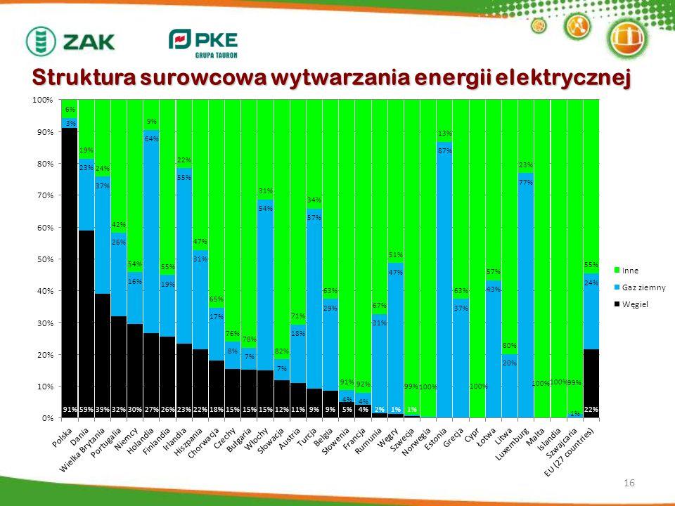 Struktura surowcowa wytwarzania energii elektrycznej