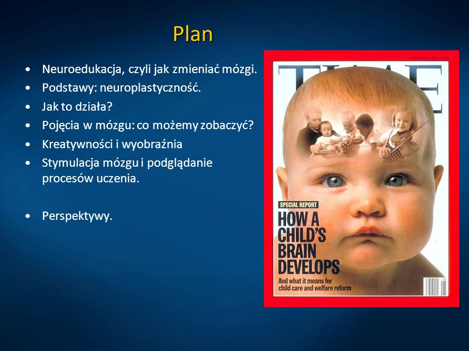 Plan Neuroedukacja, czyli jak zmieniać mózgi.