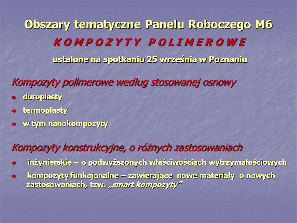 Obszary tematyczne Panelu Roboczego M6 K O M P O Z Y T Y P O L I M E R O W E ustalone na spotkaniu 25 września w Poznaniu