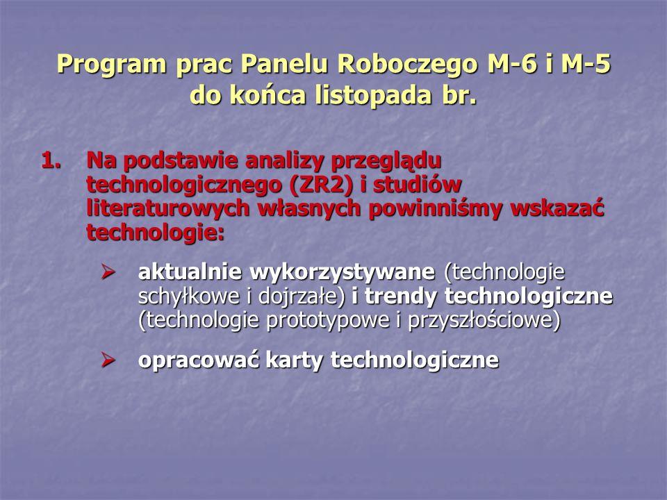 Program prac Panelu Roboczego M-6 i M-5 do końca listopada br.