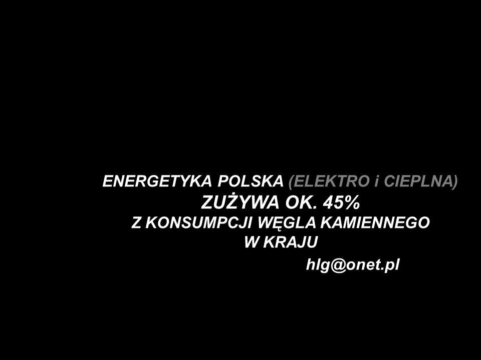 ENERGETYKA POLSKA (ELEKTRO i CIEPLNA) ZUŻYWA OK