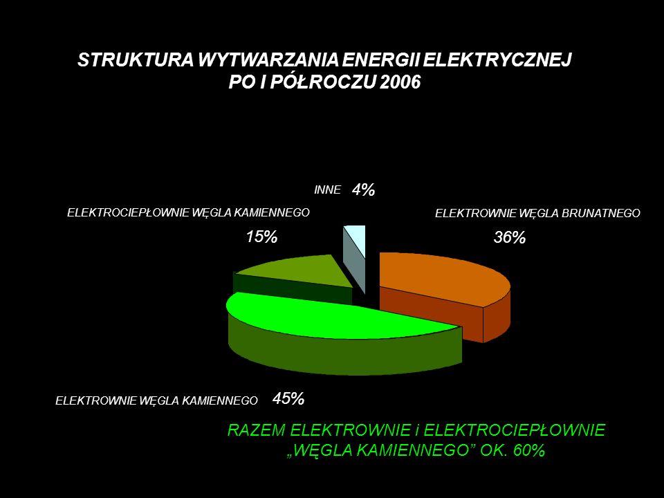 STRUKTURA WYTWARZANIA ENERGII ELEKTRYCZNEJ PO I PÓŁROCZU 2006