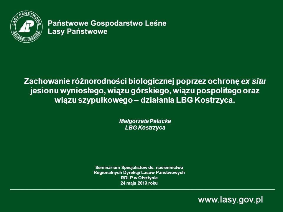 Zachowanie różnorodności biologicznej poprzez ochronę ex situ jesionu wyniosłego, wiązu górskiego, wiązu pospolitego oraz wiązu szypułkowego – działania LBG Kostrzyca.