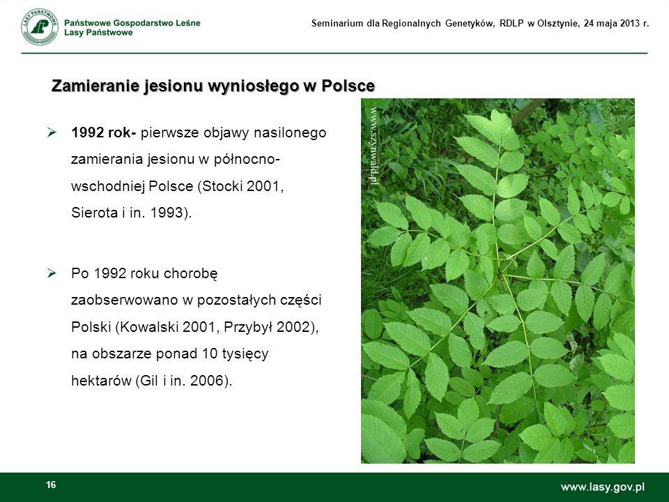Zamieranie jesionu wyniosłego w Polsce
