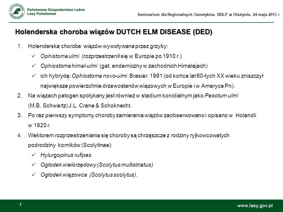 Holenderska choroba wiązów DUTCH ELM DISEASE (DED)