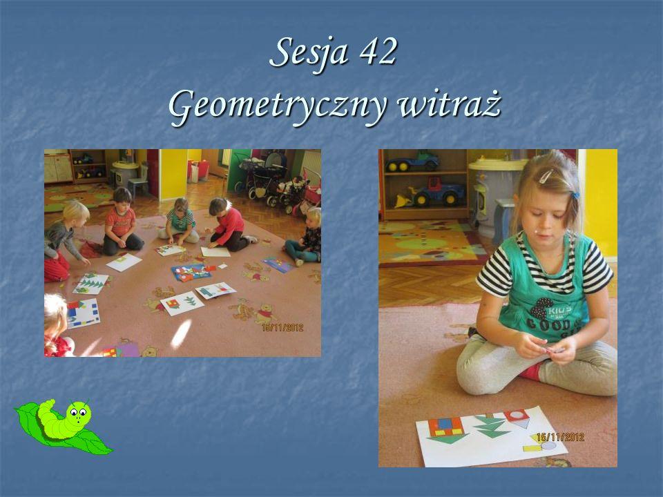 Sesja 42 Geometryczny witraż