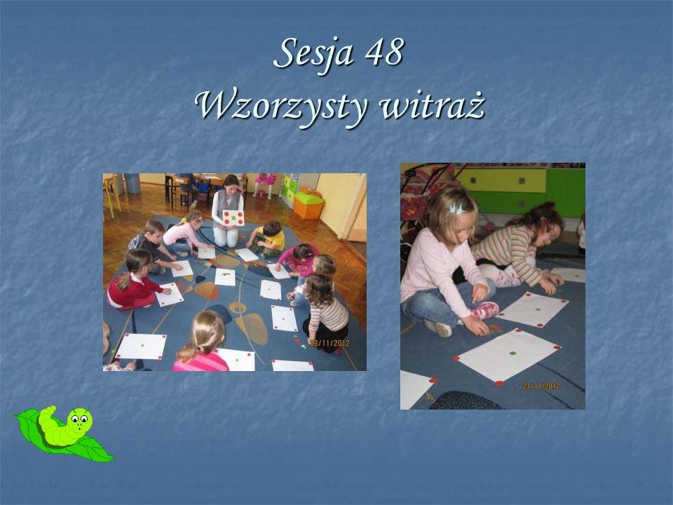 Sesja 48 Wzorzysty witraż