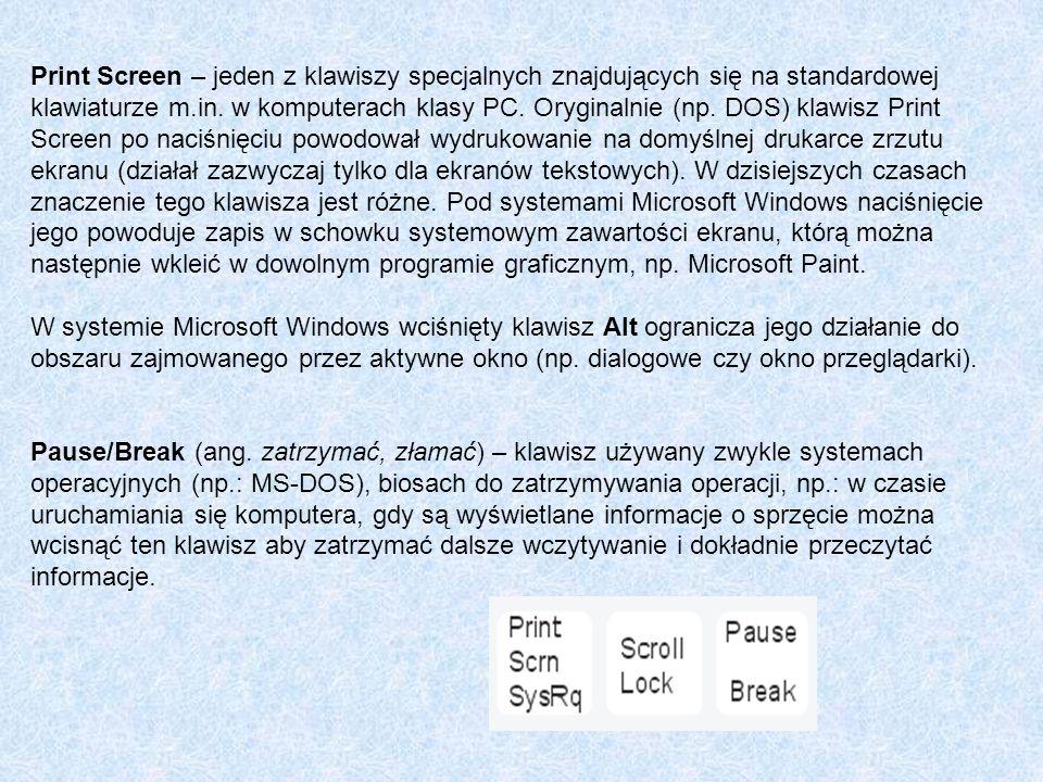 Print Screen – jeden z klawiszy specjalnych znajdujących się na standardowej klawiaturze m.in. w komputerach klasy PC. Oryginalnie (np. DOS) klawisz Print Screen po naciśnięciu powodował wydrukowanie na domyślnej drukarce zrzutu ekranu (działał zazwyczaj tylko dla ekranów tekstowych). W dzisiejszych czasach znaczenie tego klawisza jest różne. Pod systemami Microsoft Windows naciśnięcie jego powoduje zapis w schowku systemowym zawartości ekranu, którą można następnie wkleić w dowolnym programie graficznym, np. Microsoft Paint.