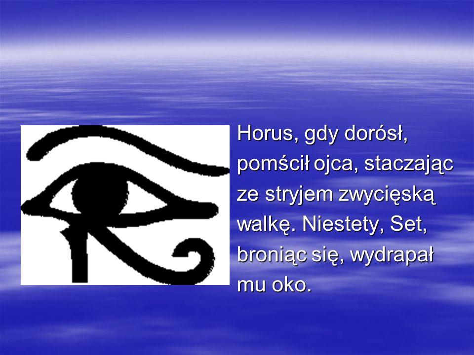 Horus, gdy dorósł,pomścił ojca, staczając. ze stryjem zwycięską. walkę. Niestety, Set, broniąc się, wydrapał.