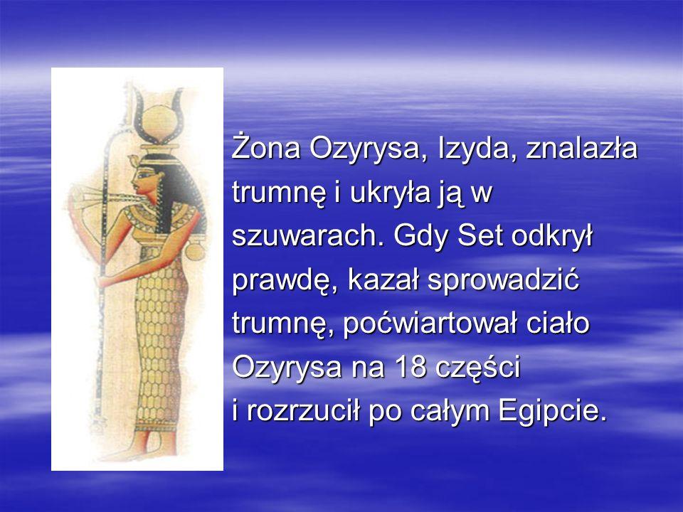 Żona Ozyrysa, Izyda, znalazła