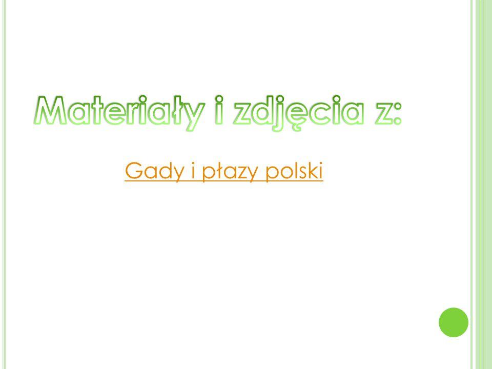 Materiały i zdjęcia z: Gady i płazy polski