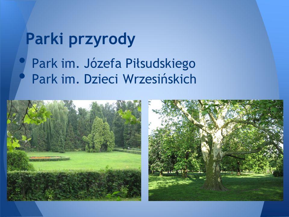 Parki przyrody Park im. Józefa Piłsudskiego