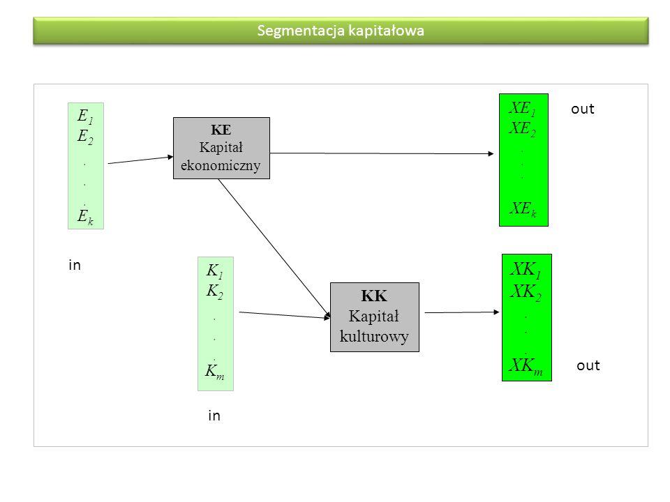 XK1 XK2 . XKm Segmentacja kapitałowa XE1 out E1 XE2 . E2 . XEk Ek in