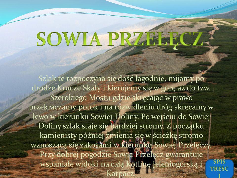 SOWIA PRZEŁĘCZ