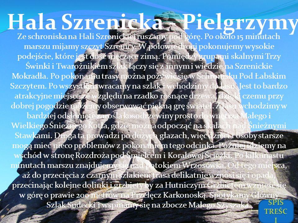 Hala Szrenicka - Pielgrzymy