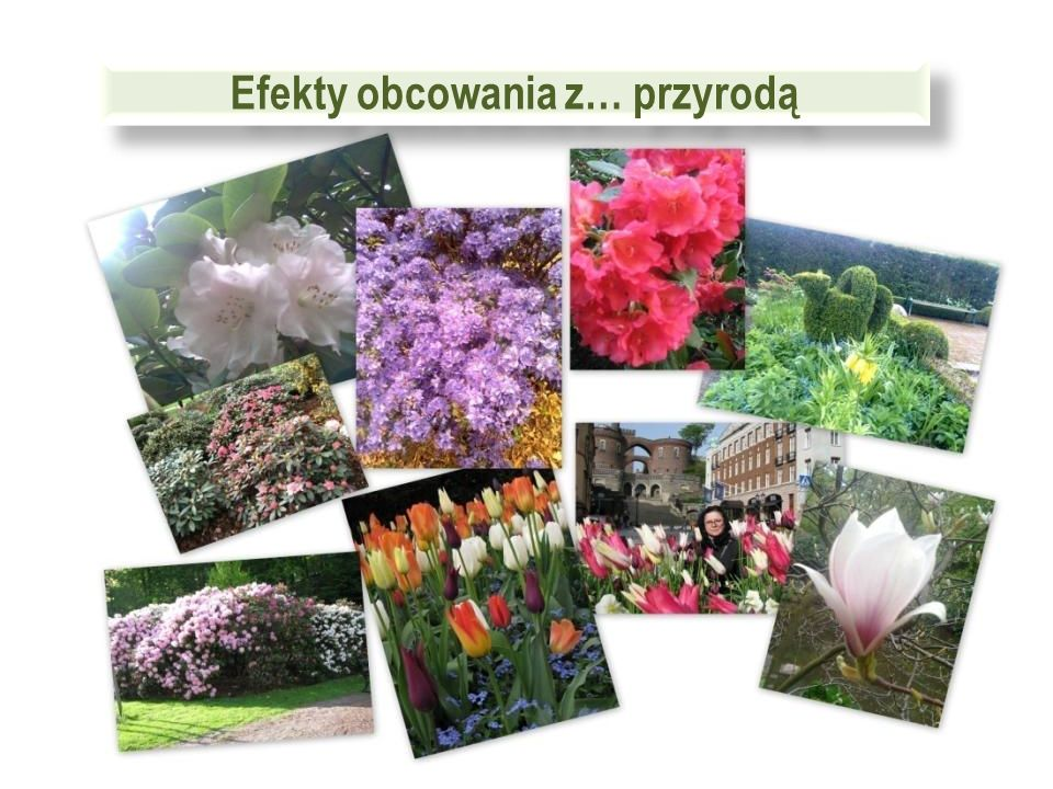Rododendron team w czasie wolnym…